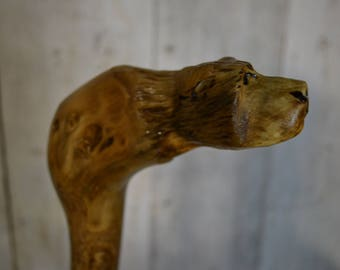 Walking Root Cane - Carved Grizzly Bear Cane - Hand Carved walking cane - functional art - ren faire