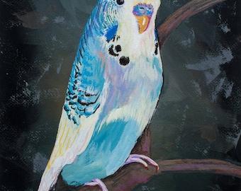 Budgie - Parakeet Painting - Original Art