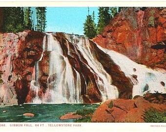 Yellowstone National Park Antique Postcard - Gibbon Falls (Unused)