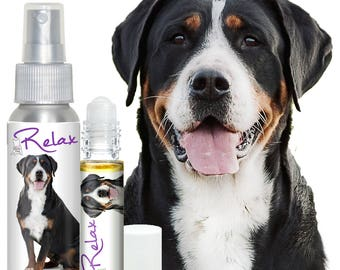 Greater Swiss Mountain Dog RELAX Aromatherapy Takes the Edge Off Fear of Thunder, Fireworks, Stress & Anxiety in Dogs Calming Essential Oils