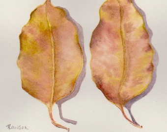 Original watercolour painting ~ 2 Eucalyptus leaves, pink and gold
