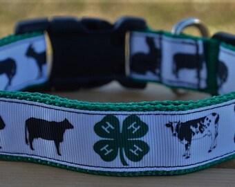 4-H livestock dog collar & or leash