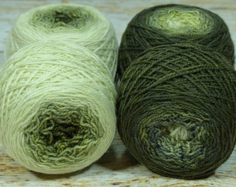 "Sock Twins "" Lichen "" -Lleap Handpainted Gradient Sock Yarn"