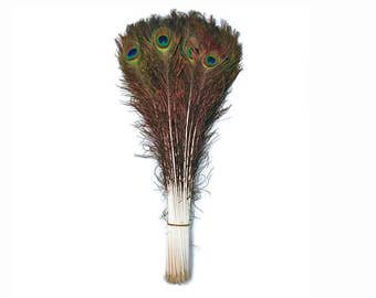 """Bulk Peacock Feathers, 100 Pieces - 40-45"""" NATURAL Peacock Tail Eye Wholesale Feathers (bulk) : 4222"""