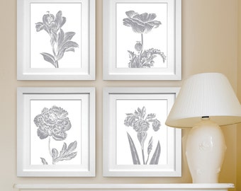 Botanical Wild Flower Impressions (Series A) Set of 4- Art Prints (Featured in Dolphin) Botanical Plant Sketch Art Print