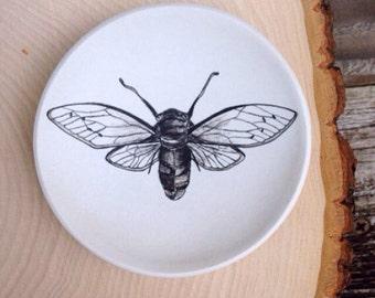 Ring Dish, Cicada Jewelry Dish, Polymer Clay Dish, Engagement Ring Dish, Birthday Gift, Trinket Dish, Entomology, Wedding Gift