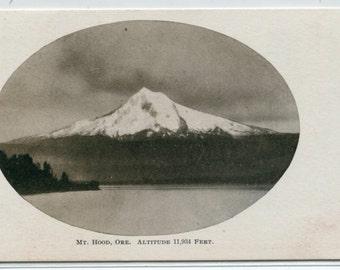 Mt Hood Mountain Forest Oregon 1907c postcard