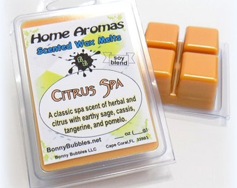 CITRUS SPA Wax Melt - 6 breakaway cubes - herbal and citrus - soy blend - clamshell type