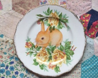 Baby Ginger Bunny with Yellow Roses Illustrated Vintage Plate