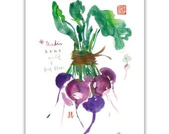 Purple radish print, Kitchen art, Watercolor print, Vegetable painting, Botanical home decor, Kitchen decor, Food art, Vegetable print, 8X10