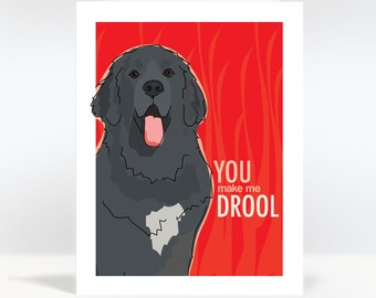 Valentines Day Card with Newfoundland Dog - You Make Me Drool - Dog Valentines Note Greeting Cards