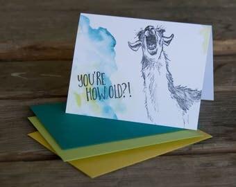 You're how old laughing llama, letterpress printed hand drawn llama eco friendly