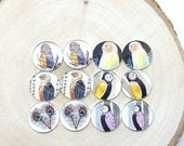 Moving 50off Sale - New 12 (6pair) 12mm Handmade Animal/Owl Glass Photo Cabochon PC836-M12 (CPC343)