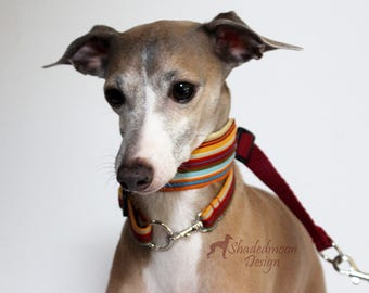 Italian Greyhound Collar Multi Stripe Dark Red, Blue and Old Gold  Martingale Style with optional coordinating ID / Tag Collar and Leash
