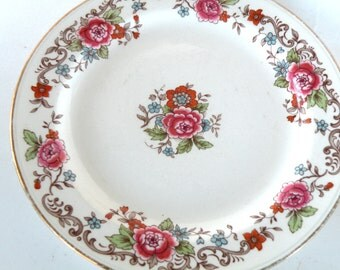 2 Available Nautilus Salad Bread or Butter Plate Garden Lover China  LN419 Homer Laughlin Mix Match Plates- Christmas Gift Plate Cookie