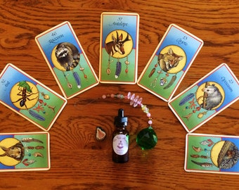 Card Reading Transformational Totem Package