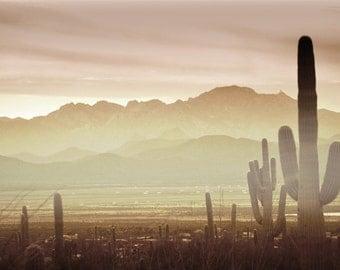 Desert Sunset Photography Print Fine Art Arizona Saguaro Cactus Rustic Mountains Southwest Winter Landscape Photography Print.