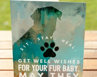 Dog Get Well Greeting Card   Sit Stay Heal Labrador Retriever    A7 5x7 Folded - Blank Inside - Wholesale Available