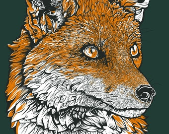 fox print drawing fox illustration poster A3 size fox art fox illustration