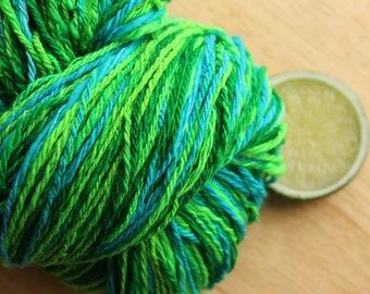 Caterpillar - Handspun Green Yarn Superwash Merino Wool Plied DK Weight