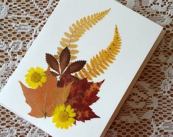 AUTUMN LEAVES Greeting Card, Colorful Autumn Leaves Art, Blank Stationary, Pressed Flower All Occasion Card, Masculine Greeting Card
