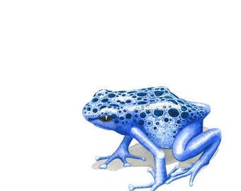 Blue poison dart frog Greeting Card (code DTA01)