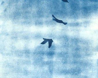 Three Ravens Cyanotype Print