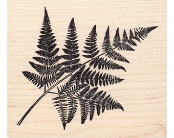 Fern Leaf 741M Beeswax Rubber Stamps Unmounted, Cling, Mounted Stamp Scenic, Landscape Stamping
