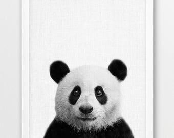 Panda Print, Cute Panda Bear Photo Print, Woodlands Animals Art, Nursery Wall Art, Black White Photography, Kids Room Printable Art Decor