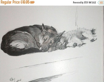 SALE Signed mounted 1930s Cecil Aldin Alsatian German Shepherd and Keeshond puppy dog plate print Unique Christmas Thanksgiving dog lover gi