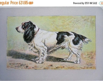 how much is a dog haircut german lithograph etsy 5138 | il 340x270.1164161939 bxas