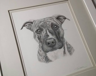 All Sizes ~Framed Dog Pencil Portraits ~ All Sizes ~ Hand-Drawn from your photos
