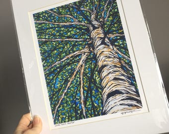"""11x14"""" Matted giclee print of birch tree by Tracy Levesque"""