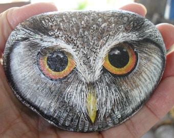 Eastern Screech Owl Face Rock OOAK