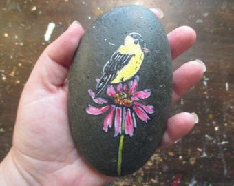 painted stone- yellow goldfinch on a coneflower