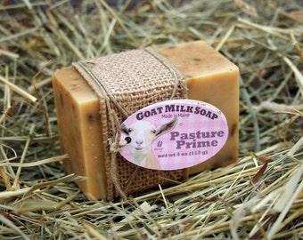 Pasture Prime Gardener Soap. Gardener Goat Milk Soap. Citronella Goat Milk Soap. Basil Soap. Cut Oats Soap. Gardener gift under 10.