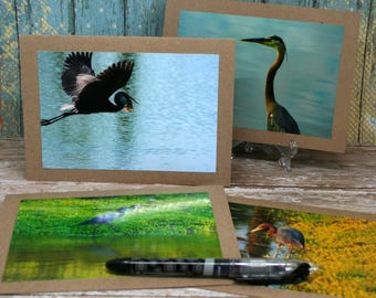 Blank Note Cards Featuring Original Photographs of Birds from the SC Low-Country on 5x7 Brown Kraft Card Stock Set of 4
