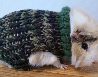 Guinea Pig Sweater Knitting Pattern : Hand Knit Guinea Pig Sweater in Thanksgiving Colors