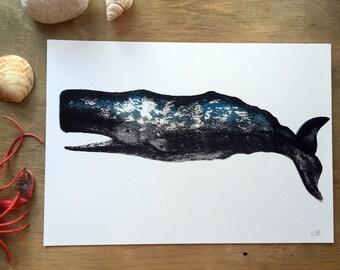Sperm Whale Wall Art Print