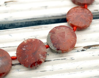 Rare & beautiful Fossilised Red Horn Coral 13.5-19mm freeform beads (ETB01146)