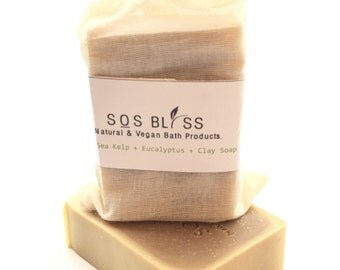 Sea Kelp Eucalyptus Soap Mother's Day Gift Natural Kelp Seaweed Soap Clay Soap Eucalyptus Clay Bar Vegan Soap