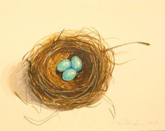 bird nest original watercolor painting 3 egg nest robins egg blue