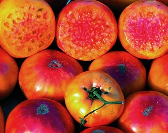 VTH) HILLBILLY TOMATO~Seeds!!!~~~~~~Great Bi-color!
