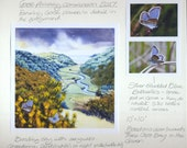 Gorse painting commission