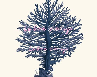 Vintage sea fan coral instant download printable art jpeg