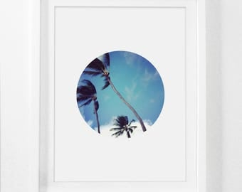 Palm Tree, Hawaii, Palm Tree Art, Hawaiian Art, Palms, Hawaii Photography, Wall Art, Printable Art, Wall Prints, Instant Download, Digital