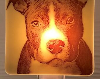 Pitbull Terrier Night Light Fused Glass