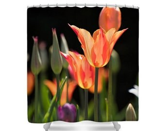 Spring Bloom Tulips Photo Art Shower Curtain, Botanical Photo Art Pink Bathroom Decor, Colorful Bath Curtain, Tulips Blooming Decor