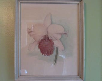 Sale! Sweet Vintage 1940's Watercolor Iris Framed Signed