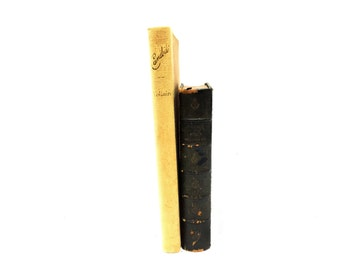 Instant Voltaire Collection!  Le Siecle de Louis XIV Nouvelle Edition & CANDIDE or All For the Best by François-Marie Arouet